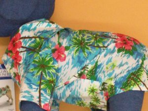 impulse-notion-blog-review-casual-canines-hawaiian-breeze-camp-dog-shirt-size-s