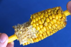 impulse-notion-blog-so-corny-yes-to-the-corn-but-hold-the-cob